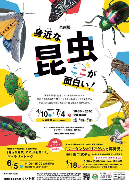 企画展「身近な昆虫 ここが面白い!」
