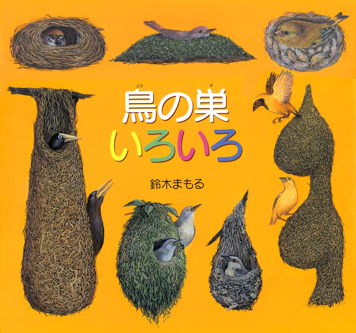 鈴木まもる・絵本原画と鳥の巣コレクション展 「鳥の巣がおしえてくれること」